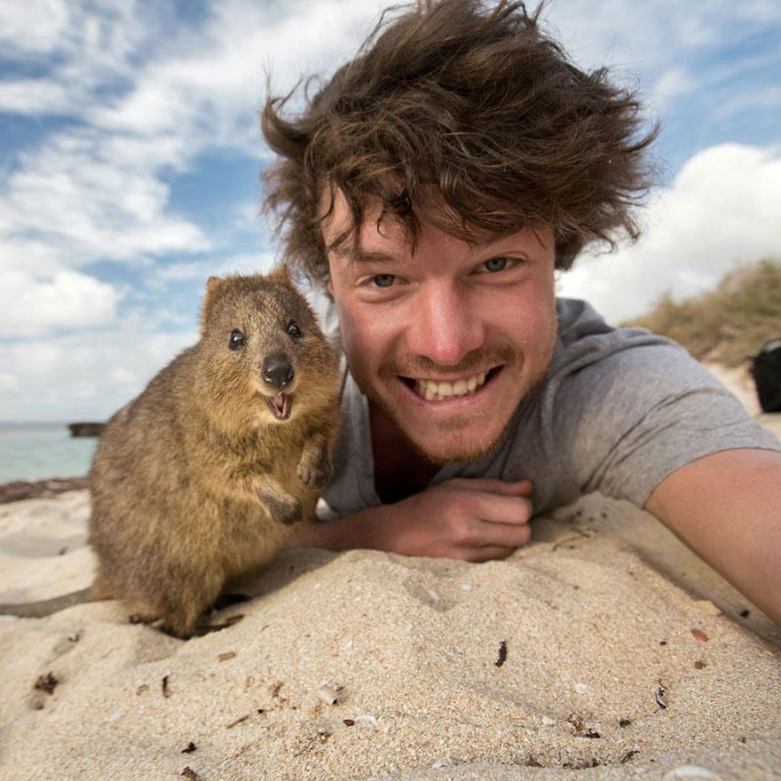 divertenti-selfie-con-animali-allan-dixon-04