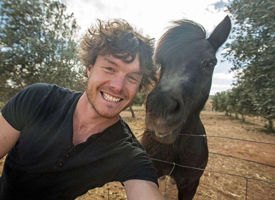 divertenti-selfie-con-animali-allan-dixon-07
