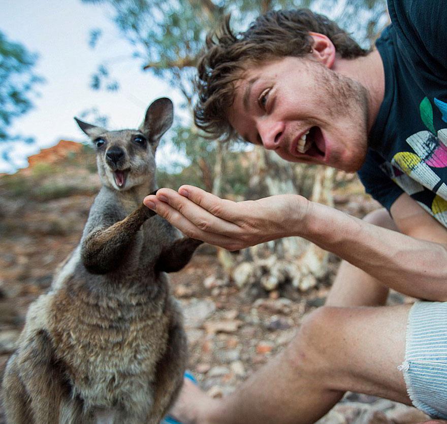 divertenti-selfie-con-animali-allan-dixon-08