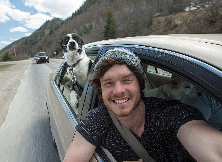 divertenti-selfie-con-animali-allan-dixon-09