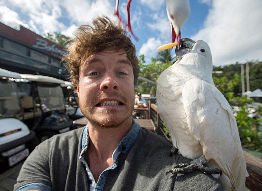 divertenti-selfie-con-animali-allan-dixon-10