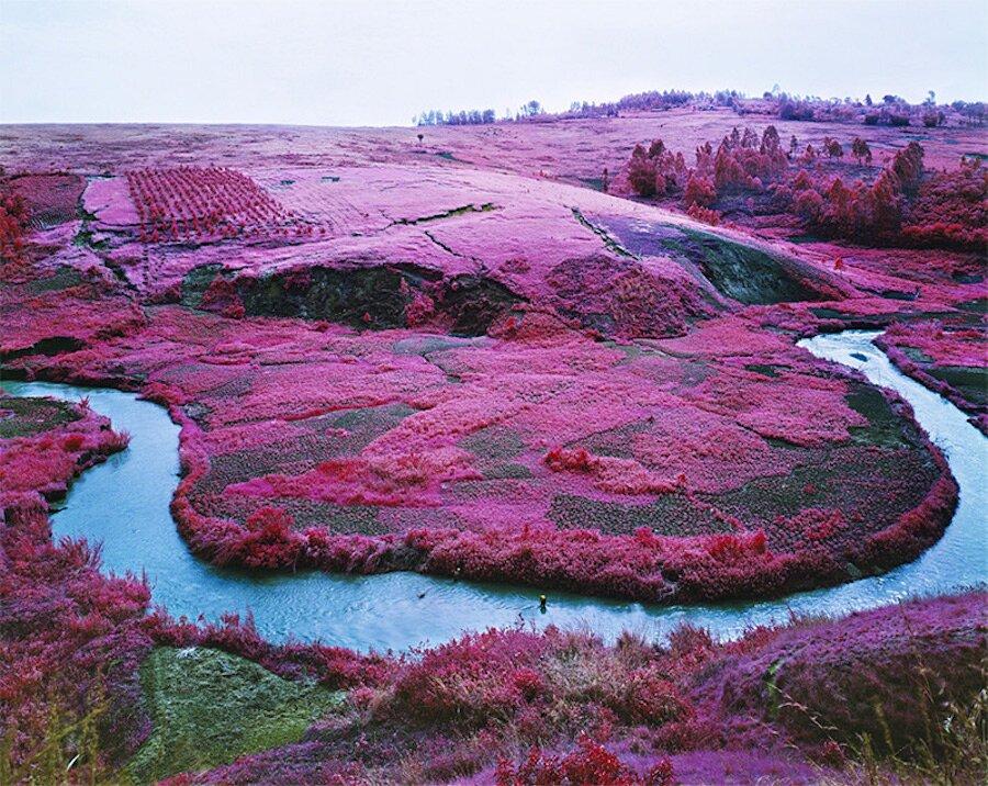 fotografia-paesaggi-rosa-congo-infrarossi-infra-richard-mosse-02