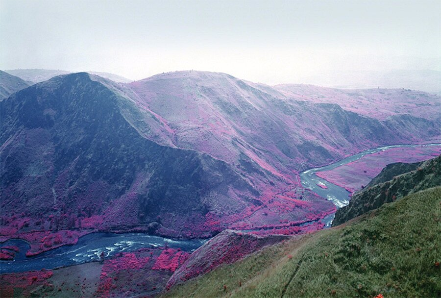 fotografia-paesaggi-rosa-congo-infrarossi-infra-richard-mosse-07