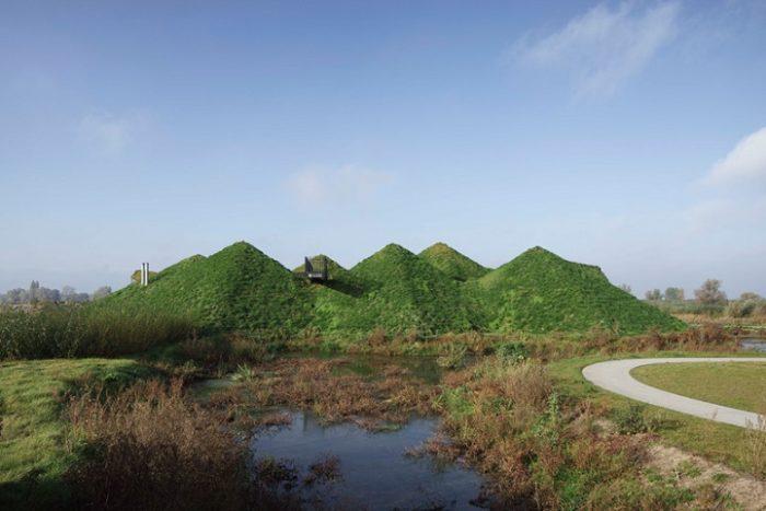 museo-biesbosch-olanda-tetto-prato-12