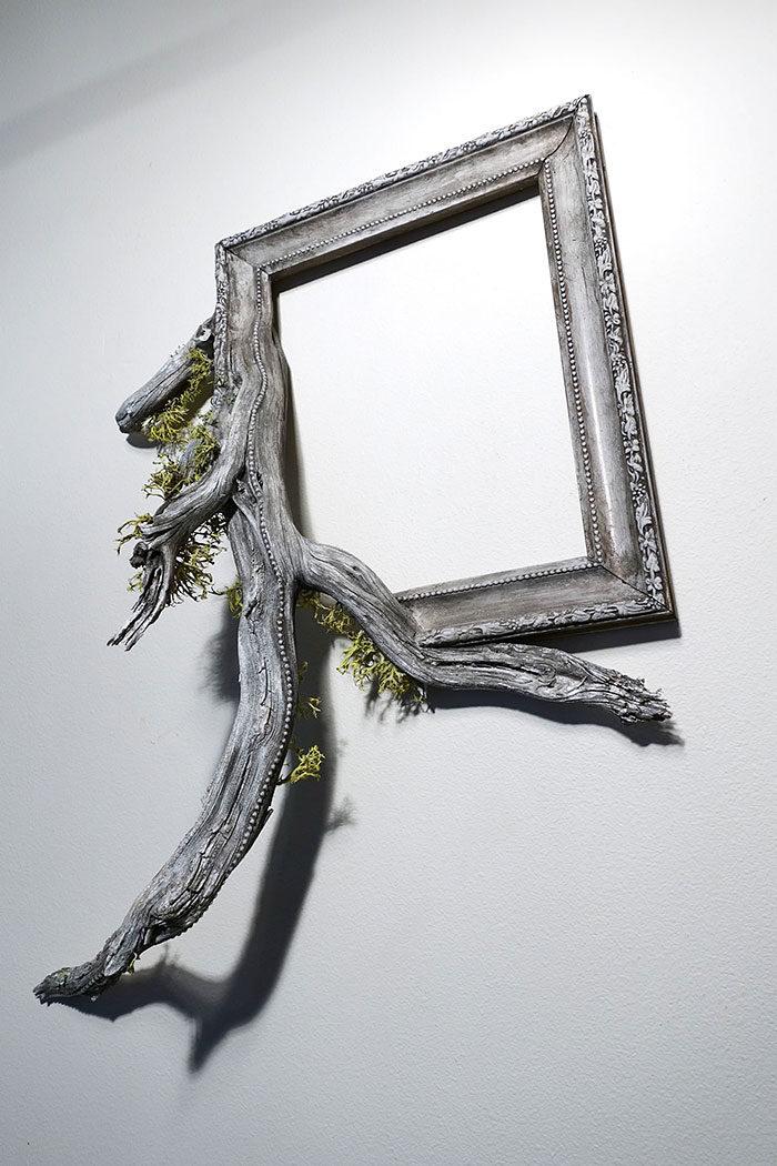 rami-alberi-cornici-antiche-arte-fusion-frames-darryl-cox-05