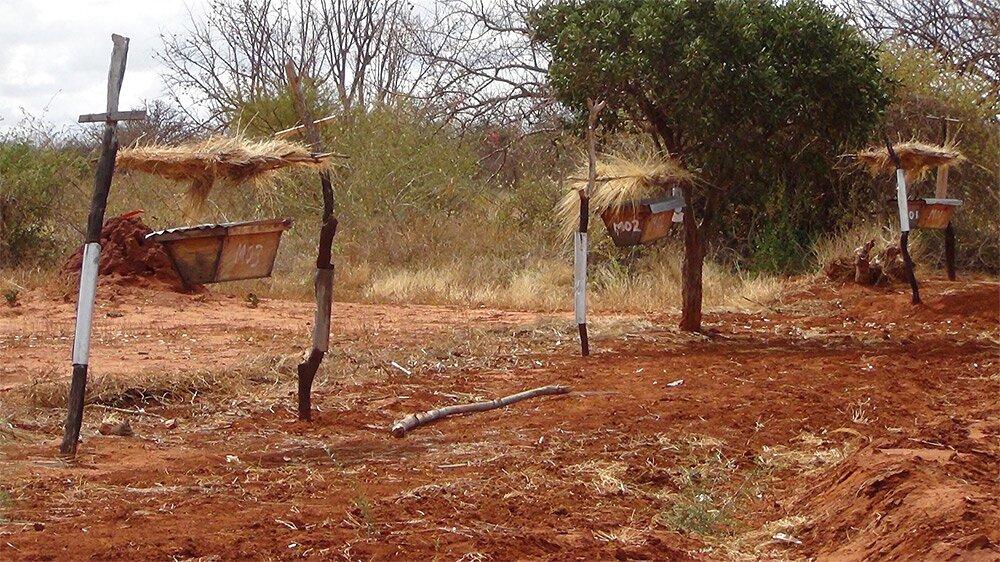 recinti-arnie-api-contro-elefanti-africa-3