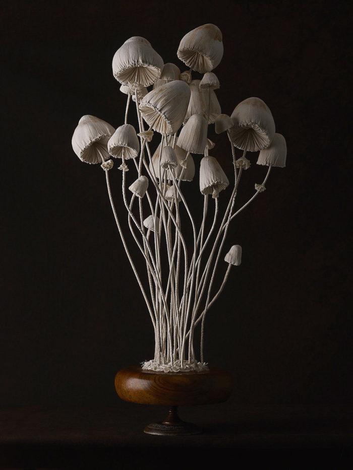sculture-funghi-stoffa-mister-finch-01