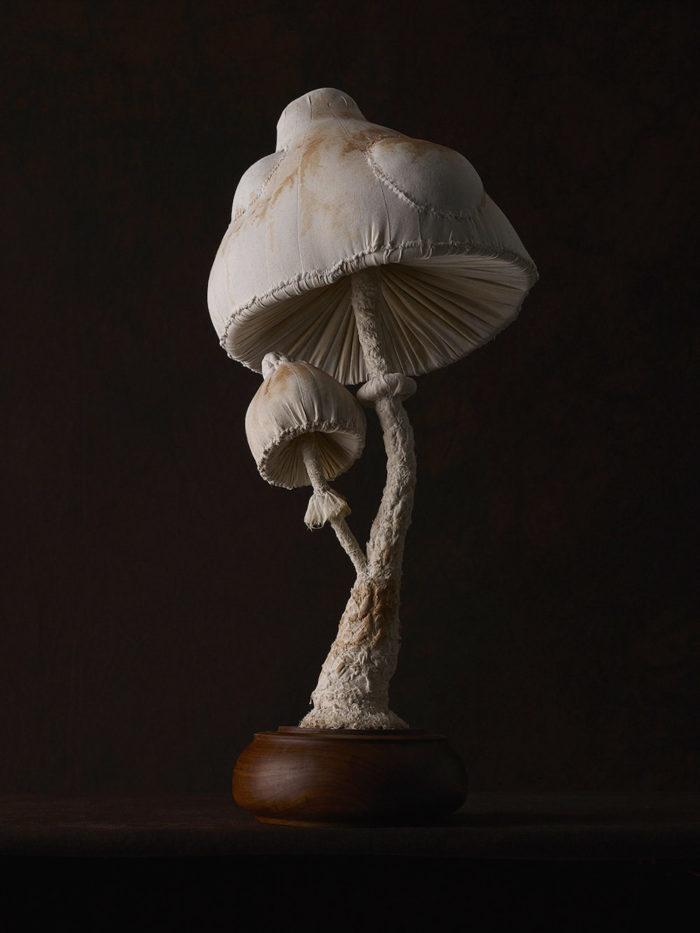 sculture-funghi-stoffa-mister-finch-05