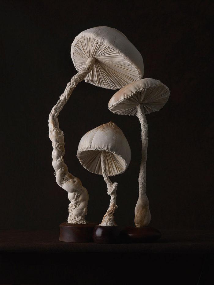 sculture-funghi-stoffa-mister-finch-07