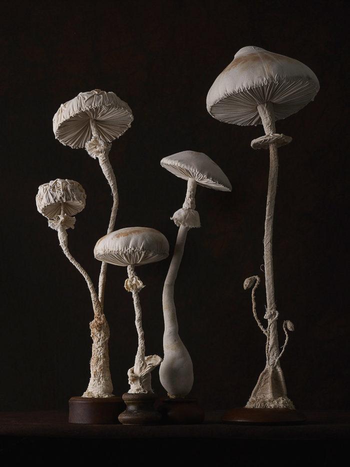 sculture-funghi-stoffa-mister-finch-08