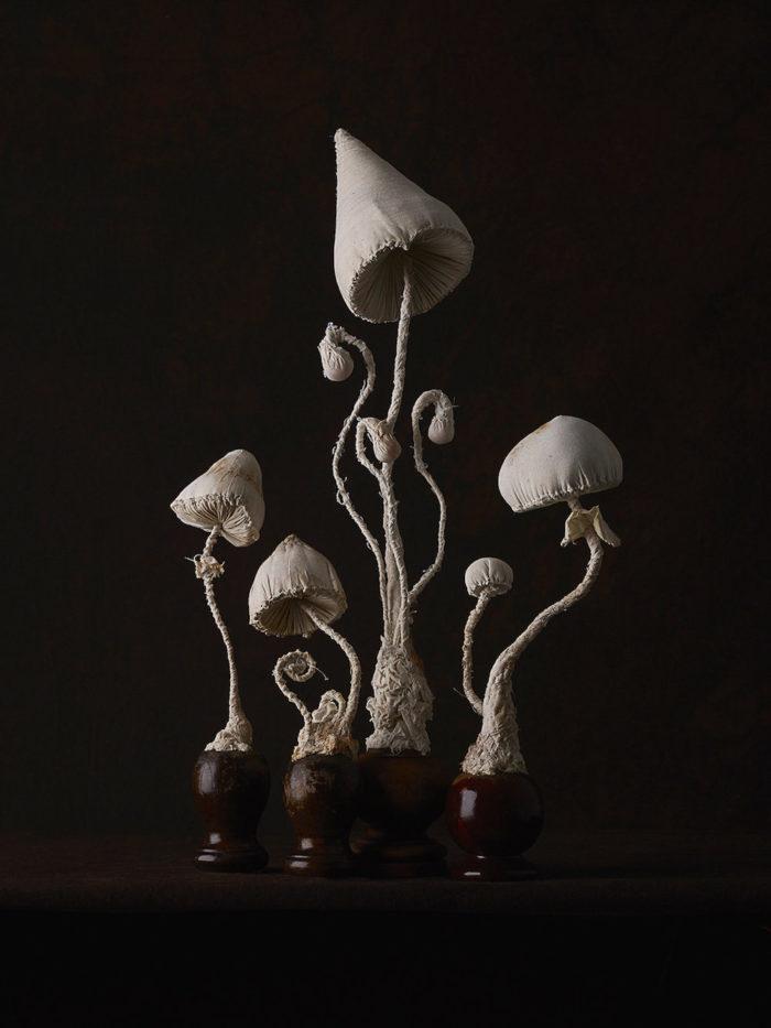 sculture-funghi-stoffa-mister-finch-09
