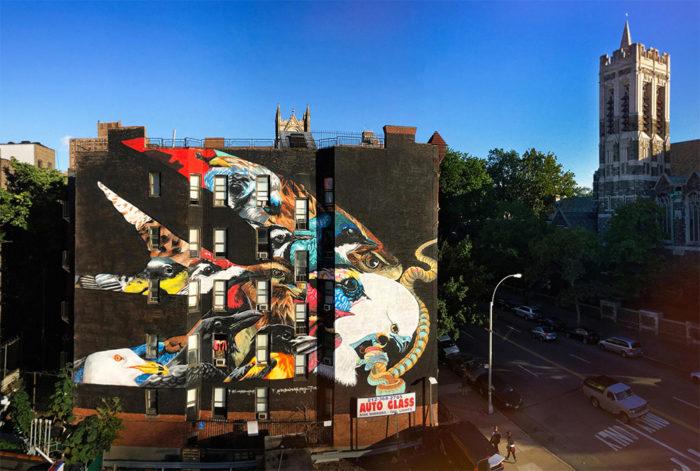 street-art-uccelli-rari-audubon-mural-project-2