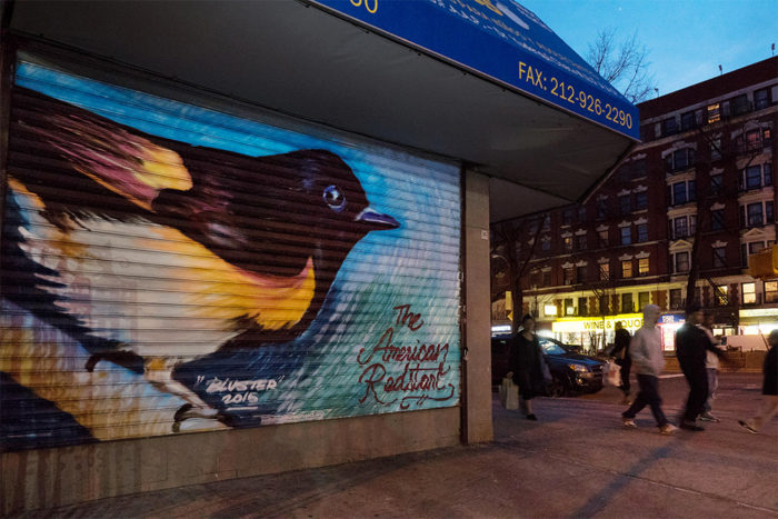 street-art-uccelli-rari-audubon-mural-project-5