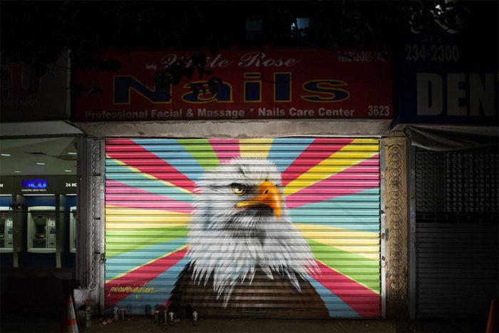 street-art-uccelli-rari-audubon-mural-project-6