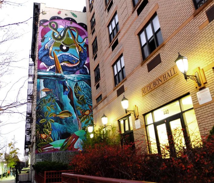 street-art-uccelli-rari-audubon-mural-project-7