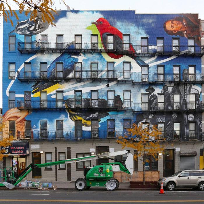street-art-uccelli-rari-audubon-mural-project-8