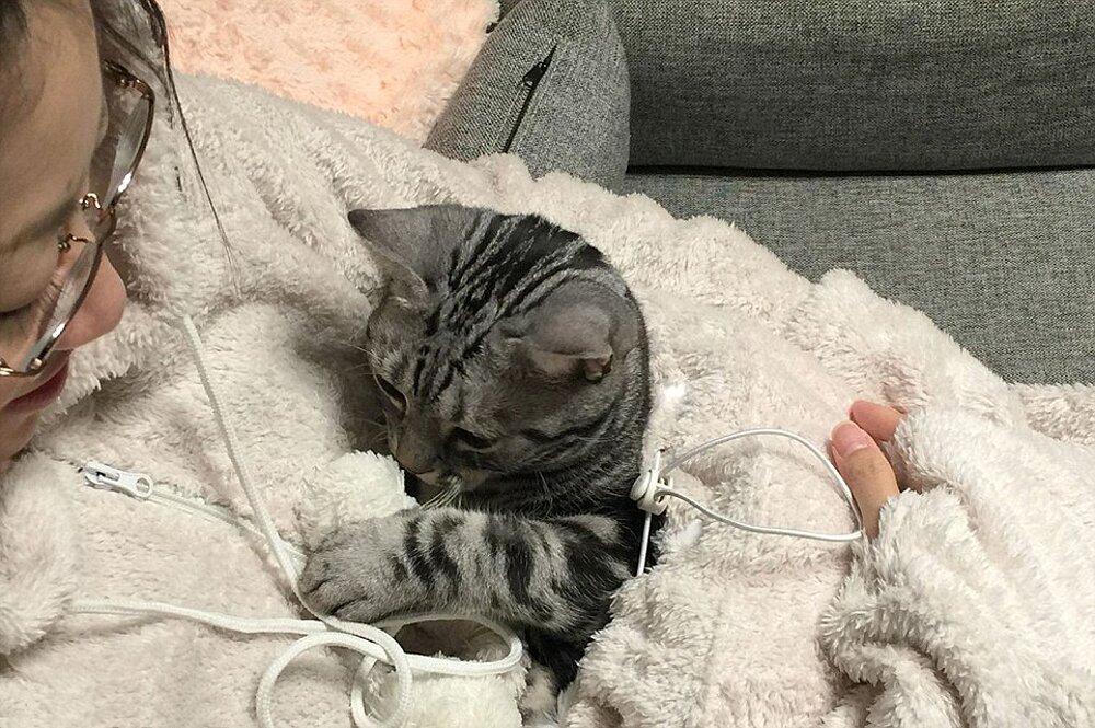 tuta-pigiama-marsupio-gatto-mewgaroo-jumpsuit-unihabitat-08