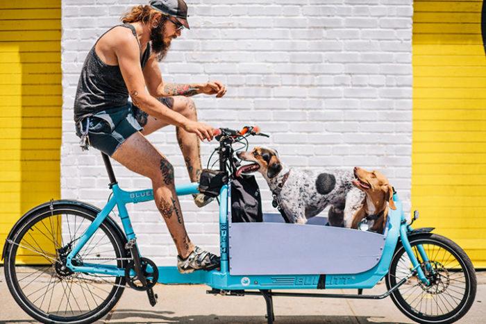 abitanti-new-york-bicicletta-fotografia-sam-polcer-11