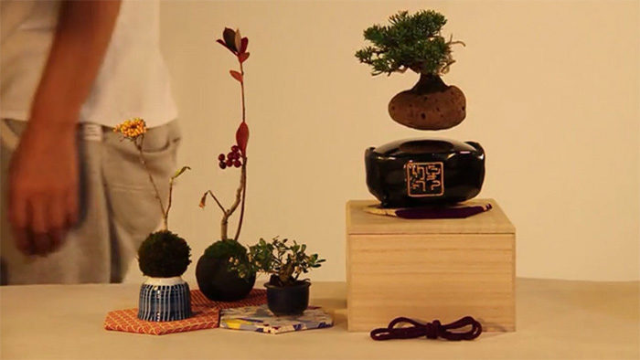 air-bonsai-sospeso-in-aria-3