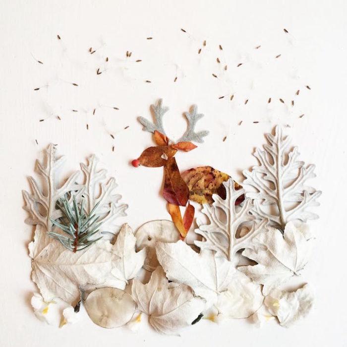 arte-composizioni-foglie-fiori-muschio-funghi-bridget-beth-collins-02