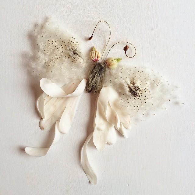 arte-composizioni-foglie-fiori-muschio-funghi-bridget-beth-collins-04