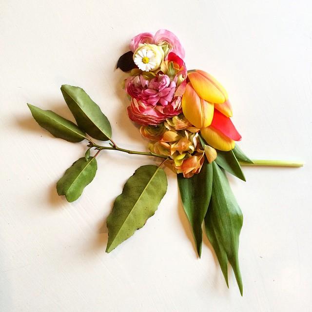 arte-composizioni-foglie-fiori-muschio-funghi-bridget-beth-collins-06