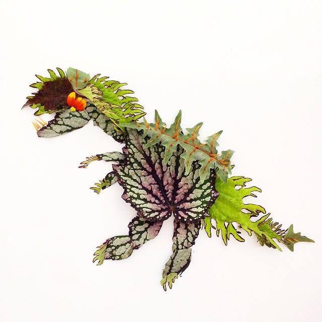 arte-composizioni-foglie-fiori-muschio-funghi-bridget-beth-collins-08