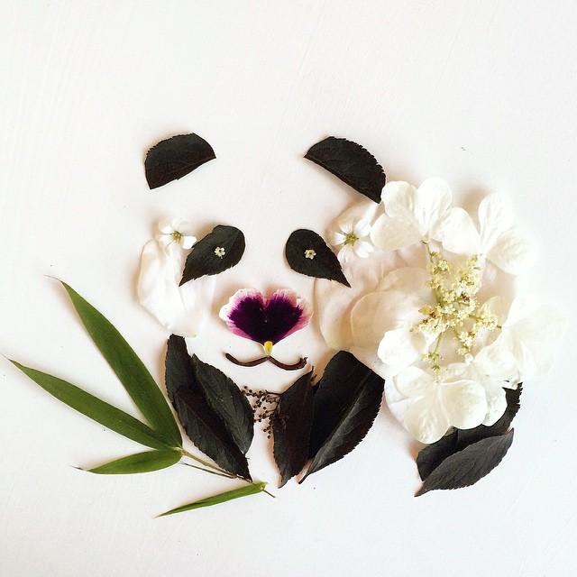 arte-composizioni-foglie-fiori-muschio-funghi-bridget-beth-collins-10