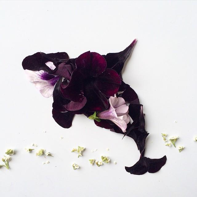 arte-composizioni-foglie-fiori-muschio-funghi-bridget-beth-collins-14