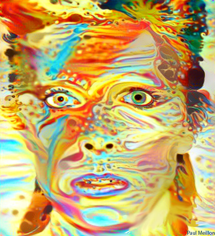 artisti-tributi-david-bowie-65