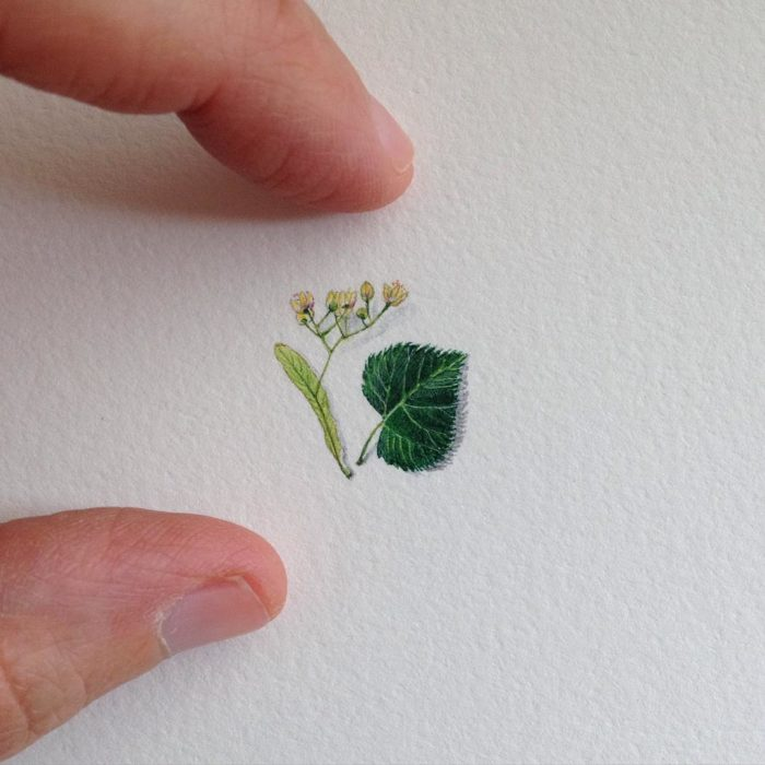 dipinti-miniatura-brooke-rothshank-03