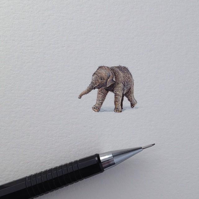 dipinti-miniatura-brooke-rothshank-17