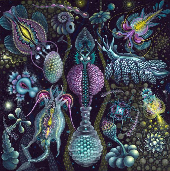 dipinti-organismi-micro-robert-steven-connett-3