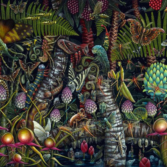 dipinti-organismi-micro-robert-steven-connett-6