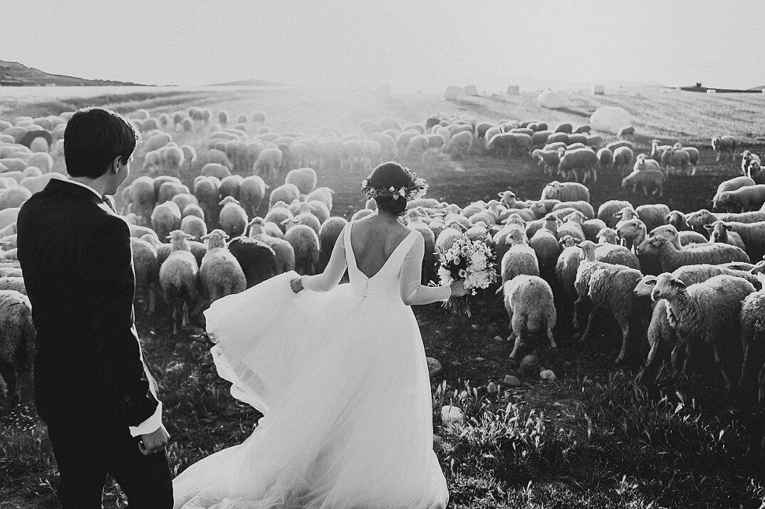 migliori-foto-matrimonio-2015-junebug-weddings-19