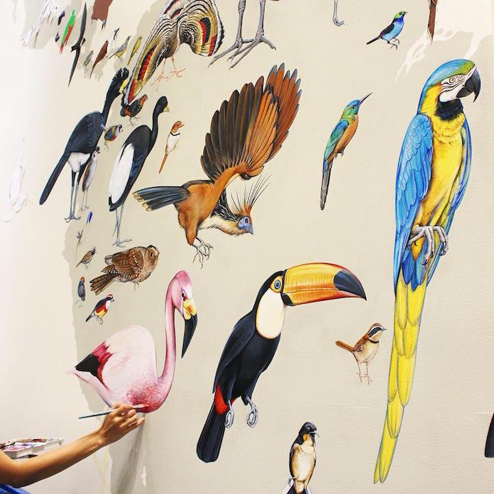 murale-dipinti-243-specie-uccelli-jane-kim-01