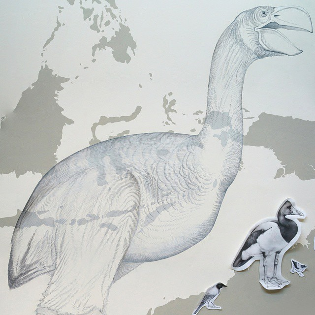 murale-dipinti-243-specie-uccelli-jane-kim-04