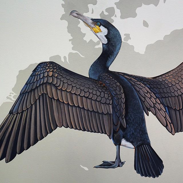 murale-dipinti-243-specie-uccelli-jane-kim-05