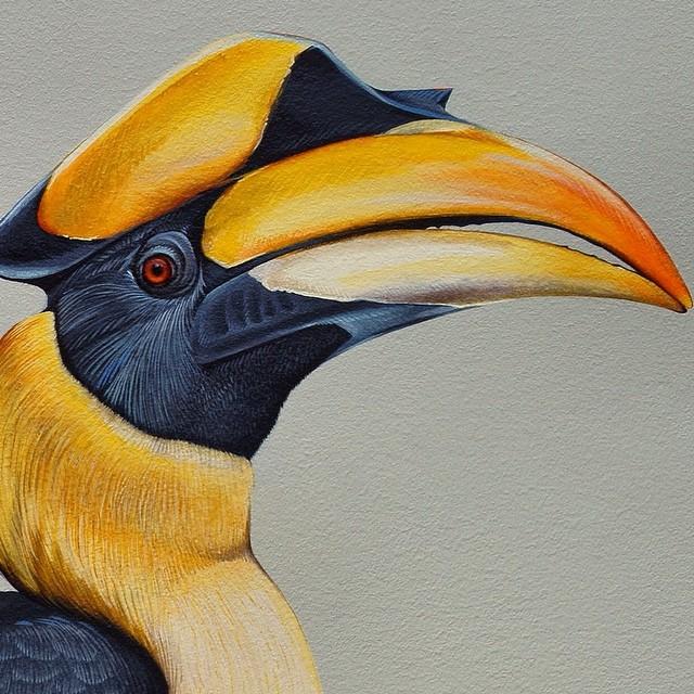 murale-dipinti-243-specie-uccelli-jane-kim-09