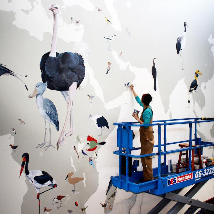 murale-dipinti-243-specie-uccelli-jane-kim-18