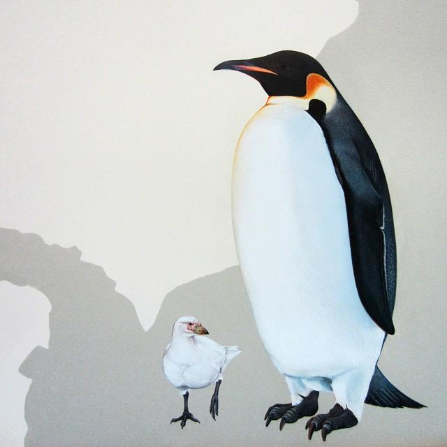 murale-dipinti-243-specie-uccelli-jane-kim-21
