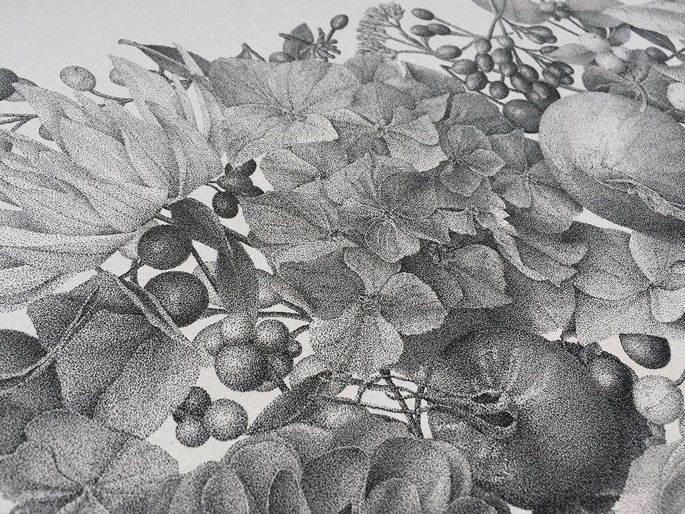 puntinismo-illustrazione-autumn-xavier-casalta-8