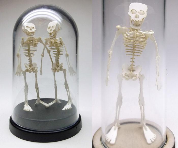 scheletri-dinosauri-miniatura-carta-tinysaur-5