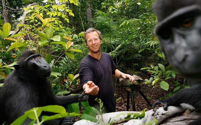 selfie-scimmia-macaco-copyright-3