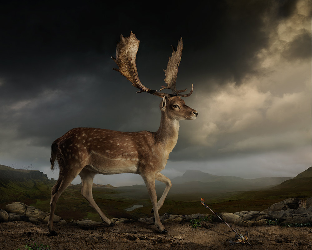 Joseph-mcglennon-vincitore-bowness-foto-potente-misteriosa-6
