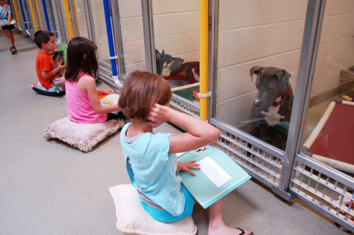 bambini-leggono-ai-cani-canile-adozione-human-society-of-missouri-2