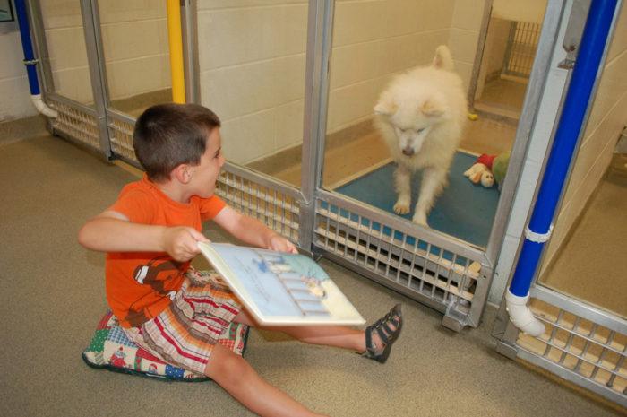 bambini-leggono-ai-cani-canile-adozione-human-society-of-missouri-3