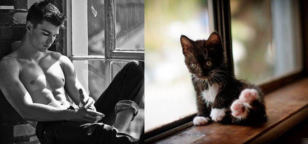 foto-uomini-sexy-gatti-pose-simili-des-hommes-des-chatons-11