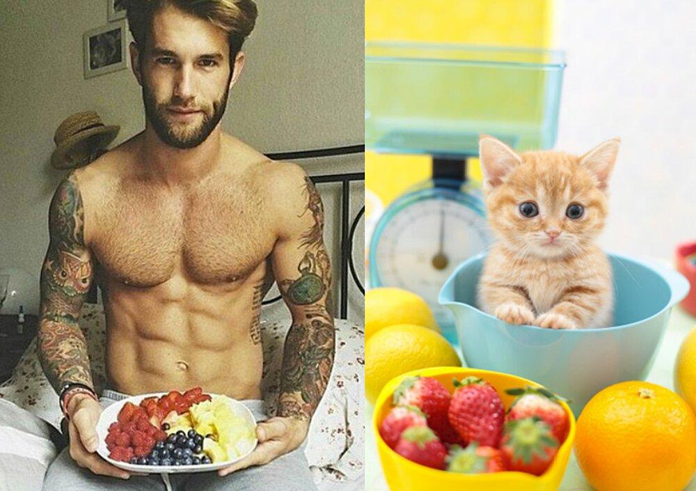 foto-uomini-sexy-gatti-pose-simili-des-hommes-des-chatons-13