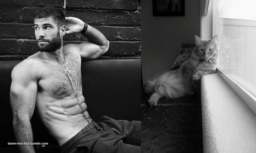 foto-uomini-sexy-gatti-pose-simili-des-hommes-des-chatons-15